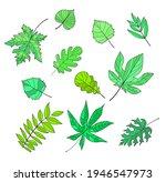 a set of leaves   maple  birch  ... | Shutterstock .eps vector #1946547973