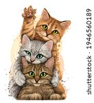 cats. wall sticker. color ... | Shutterstock .eps vector #1946560189