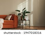 Small photo of Stylish interior of living room at fancy home with design sofa, marble side table, plant, pillow, blanket, book and personal accessories in modern home decor. Template. Copy space.
