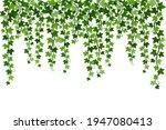 green climbing hanging ivy... | Shutterstock .eps vector #1947080413