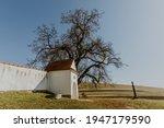 Transylvanian Architecture Next ...