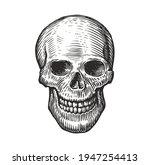 human skull in vintage gothic... | Shutterstock .eps vector #1947254413