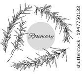 set of rosemary illustration ... | Shutterstock .eps vector #1947750133