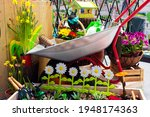 Small photo of Various garden tools and decor. Household goods in a wheelbarrow trolley flowers, watering, goloshes, gloves, flower pot, pots, scoop, planting equipment, sprayer.