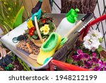 Small photo of Various garden tools and decor. Household goods in a wheelbarrow trolley flowers, watering, goloshes, gloves, flower pot, pots, scoop, planting equipment, sprayer