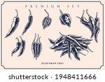engraved illustration of chili...   Shutterstock .eps vector #1948411666