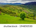 summer landscape. village on the hillside near forest on the mountain - stock photo