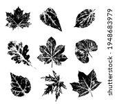 ink print leaves. black ink... | Shutterstock .eps vector #1948683979