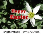 Happy Easter Words With Nature...