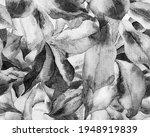 schefflera arboricola seamless...   Shutterstock . vector #1948919839