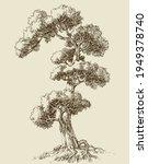 oak tree hand drawn vector... | Shutterstock .eps vector #1949378740
