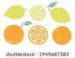 set of citrus fruit... | Shutterstock .eps vector #1949687383