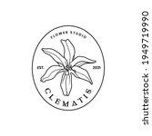 Flower Clematis Logotype....