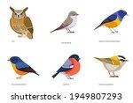 set of birds vector  owl  gray... | Shutterstock .eps vector #1949807293