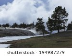 land of live geysers ...   Shutterstock . vector #194987279