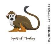 Squirrel Monkey Cartoon...