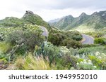 Road On La Gomera. La Gomera Is ...