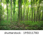 panorama of a green summer... | Shutterstock . vector #195011783