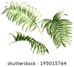 Watercolor palm leaves isolated on white.