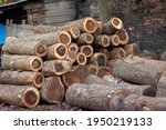 Pile Or Heap Of Cut Tree Trunks ...