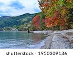 Autumn Leaves Scenery Of Lake...