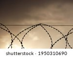 Silhouette Of Rusty Barbed Wire ...