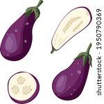 set with eggplants eggplants ...   Shutterstock .eps vector #1950790369