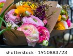 beautiful tender blossoming of... | Shutterstock . vector #1950883723