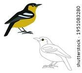 A Set Of Two Birds Ioras...