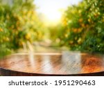 Empty Wood Table With Free...
