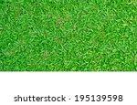 green grass | Shutterstock . vector #195139598