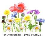 watercolor drawing field... | Shutterstock . vector #1951692526