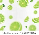 falling lime fruit. green... | Shutterstock .eps vector #1952098816