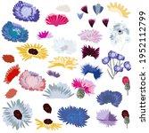 set of vector flowers in rustic ... | Shutterstock .eps vector #1952112799