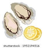 oysters vector stock... | Shutterstock .eps vector #1952194516