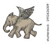 angel flying baby elephant... | Shutterstock .eps vector #1952626309