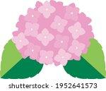 cute and beautiful hydrangea... | Shutterstock .eps vector #1952641573