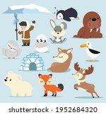 cute arctic  flat design... | Shutterstock .eps vector #1952684320