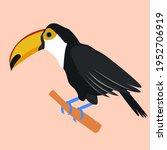 toucan. tropical bird. toucan...   Shutterstock .eps vector #1952706919