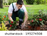 Planting Flowers In A Beautifu...