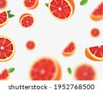 ripe juicy tropical grapefruit... | Shutterstock .eps vector #1952768500