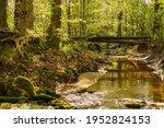 Logs Bridge A Shallow Rocky...