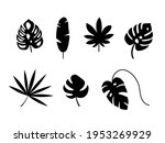 Set Of Exotic Tropical Leaves....