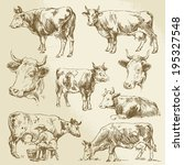 agriculture,animal,background,beef,bio,brown,bull,cattle,cow,cowboy,cream,dairy,domestic,drawing,drawn