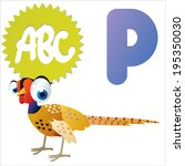 P is for Pheasant - stock vector