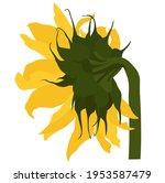 sunflower vector stock... | Shutterstock .eps vector #1953587479