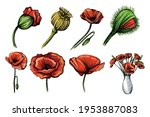 colorful watercolor hand drawn...   Shutterstock .eps vector #1953887083