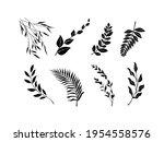 leaves icon vector illustration.... | Shutterstock .eps vector #1954558576