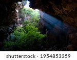Small photo of Landscape of tree and rock as foreground inside Sai cave with light ray through open hole at the top , Sai cave, Khao Sam Roi Yot National Park, Sam Roi Yot, Prachuap Khiri Khan, Thailand