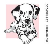 Cute Dalmatian Puppy Dog. Hand...